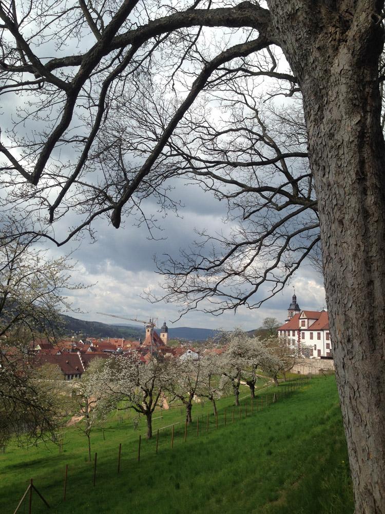 Schloss Wilhelmsburg_Schmalkalden_Frühling 2017_golden cage