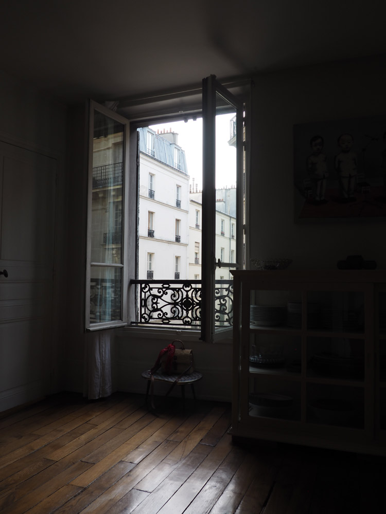 Paris_Montmarte_golden cage_Mädelstrip_4