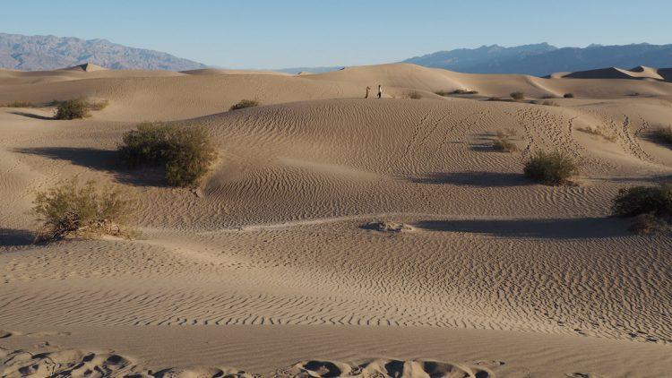 Volle Woche mit Veränderungen und ein Denimlook in der Wüste