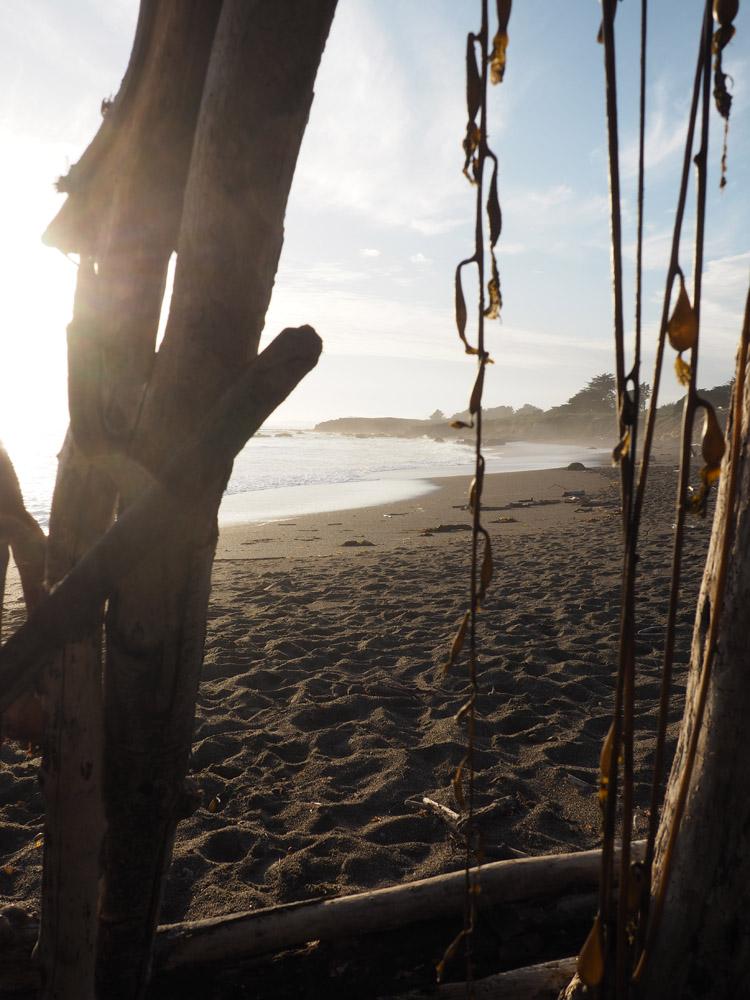 Gehen oder Bleiben_golden cage_Cambria_Moonstonebeach_California_3